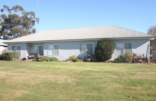 Picture of 56 Cottons  Road, Cobram VIC 3644