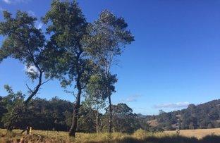 Picture of Lot 1 Warrigal Range Road, Brogo NSW 2550