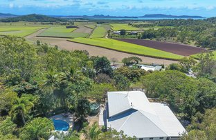 Picture of 159 Olletts Road, Habana QLD 4740