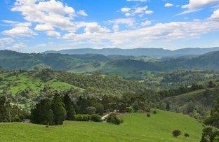 Picture of 50 Carinya Close, Kanimbla NSW 2790