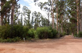 Picture of Lot 13041 cnr Moore & Preston Roads, Boorara Brook WA 6262