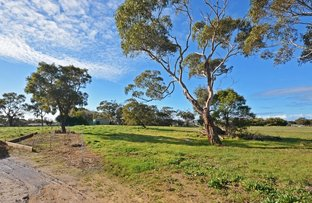 Picture of Lot 19 Murphys Road, Portland VIC 3305