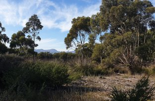 Picture of Lot 1 Hines Road, Whitemark, Whitemark TAS 7255