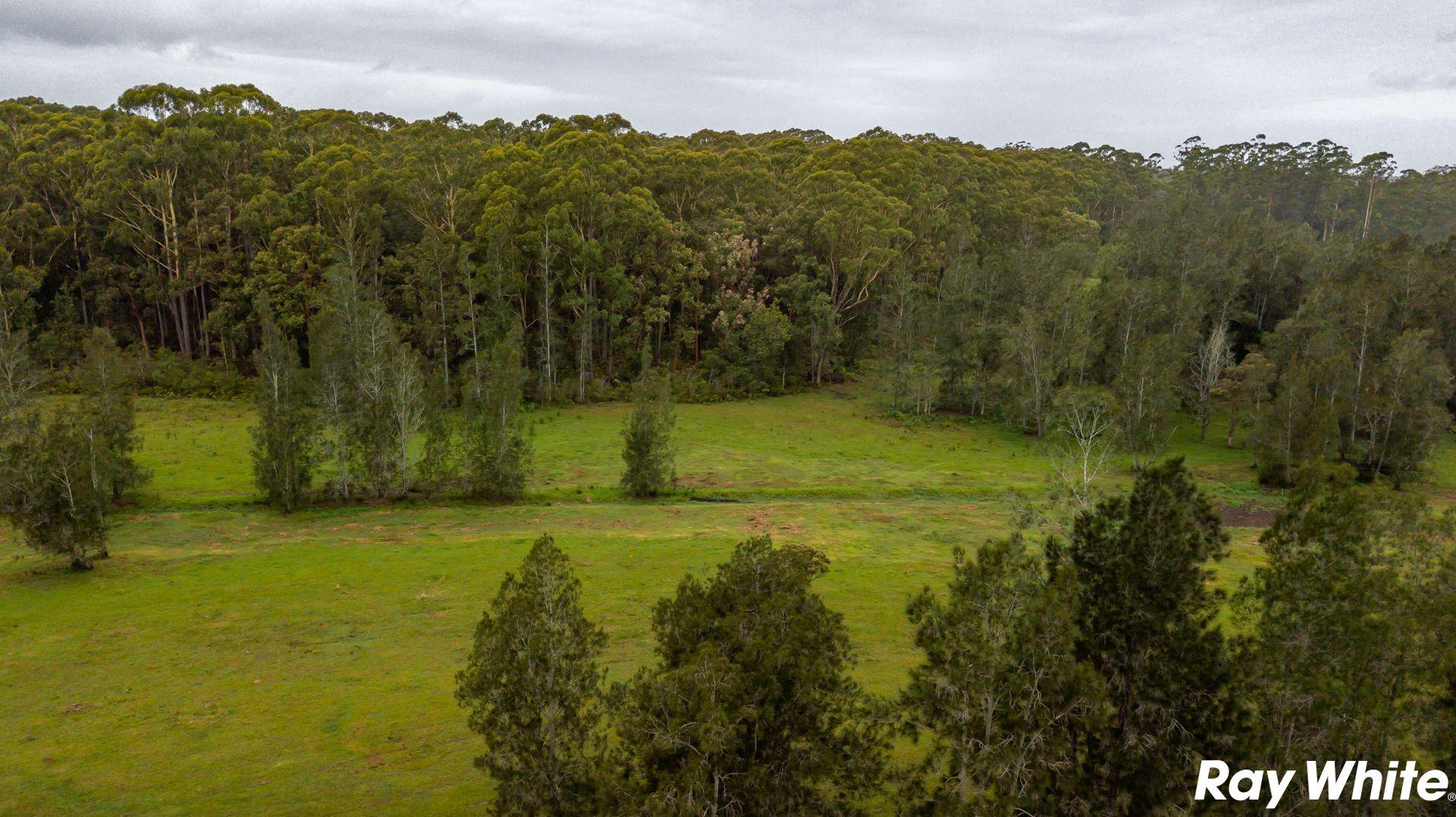 453 Failford Road, Failford NSW 2430, Image 1