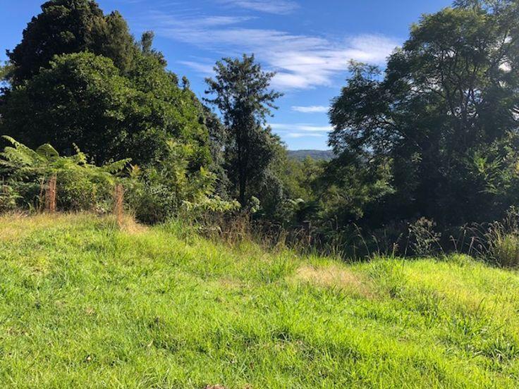125 Glenwarren Road, Elands NSW 2429, Image 1