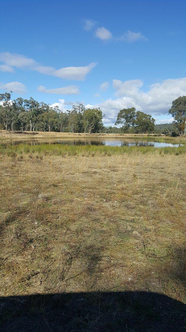 Lots 1 & 95 Big Hill Rd, Thanes Creek QLD 4370, Image 2