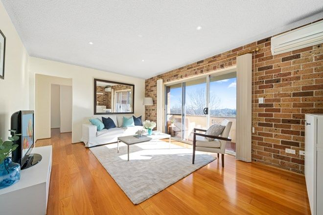 Picture of 6/96 Wentworth Street, RANDWICK NSW 2031