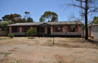 16 Durnfo Road, Quorn SA 5433
