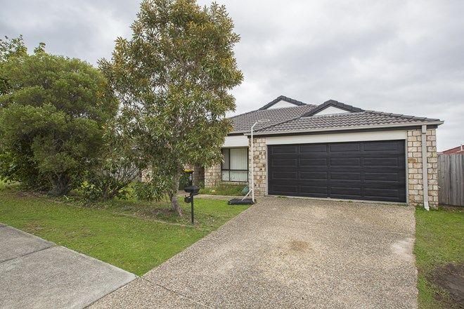 Picture of 1 Billinghurst Crescent, UPPER COOMERA QLD 4209