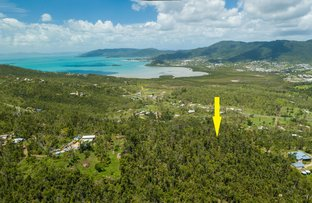 Picture of Lot 25 Black Road, Riordanvale QLD 4800