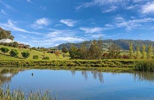 Picture of 1295 Bingleburra Road, Gresford NSW 2311