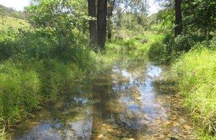 900 Mud Flat Road, Drake NSW 2469
