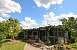 Picture of 2516 Kelvin Rd, Kelvin NSW 2380
