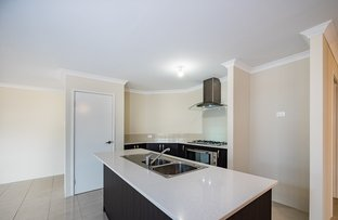 Picture of 20 Jonquil Grove, Karnup WA 6176