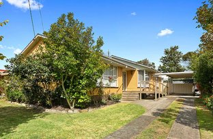 Picture of 10 Stork Avenue, Belmont VIC 3216