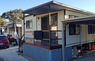 Picture of 17/17 Terara Road, Terara NSW 2540