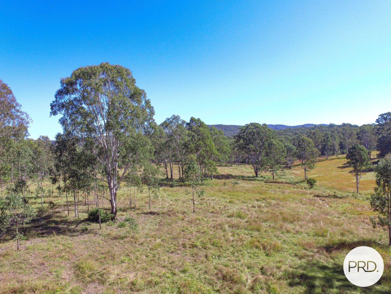 Paddys Flat Road, Tabulam NSW 2469, Image 1