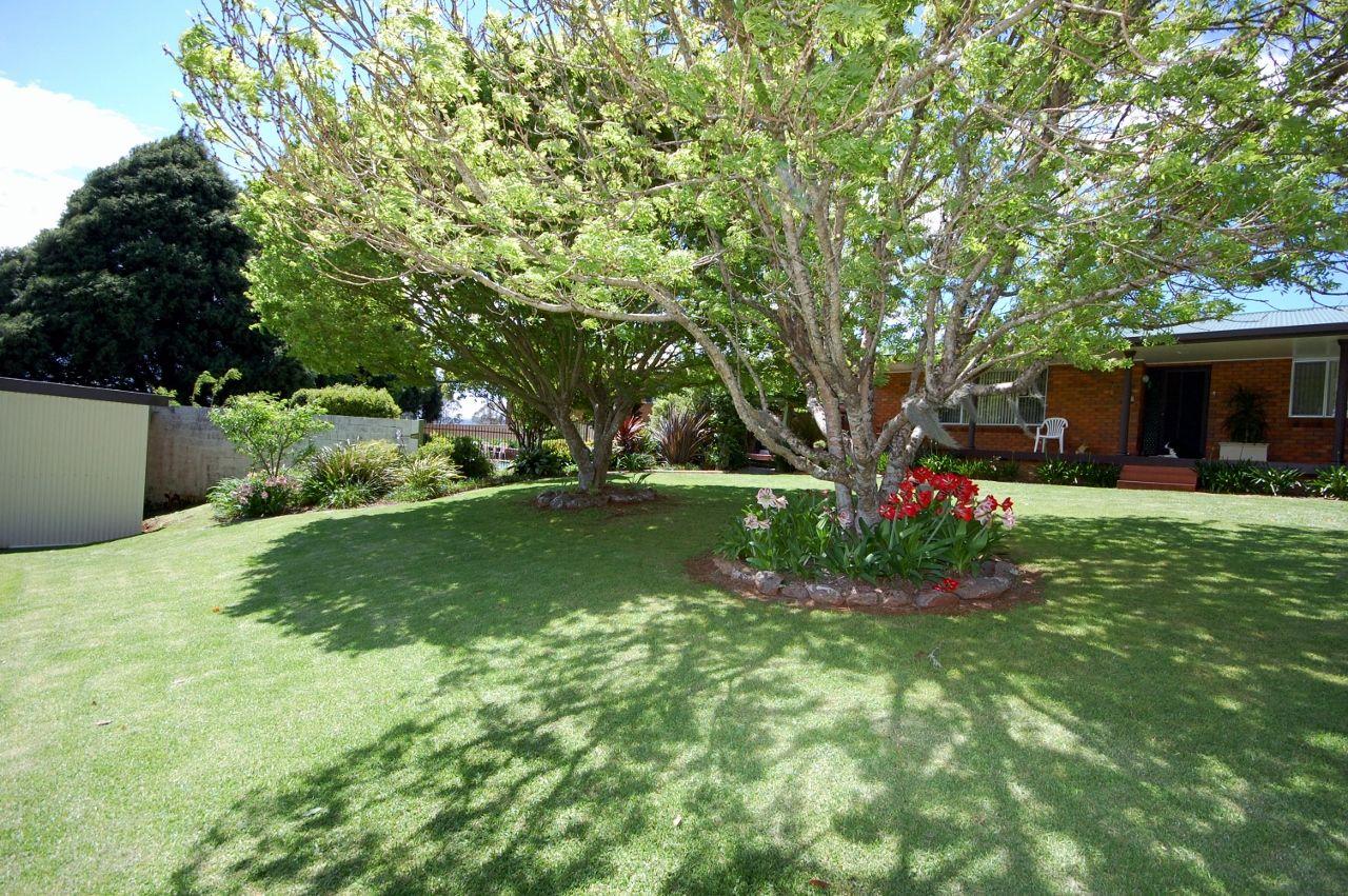 Tyringham Rd, Dorrigo NSW 2453, Image 0