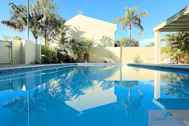 Picture of 22/1 Banksia Terrace, SOUTH YUNDERUP WA 6208