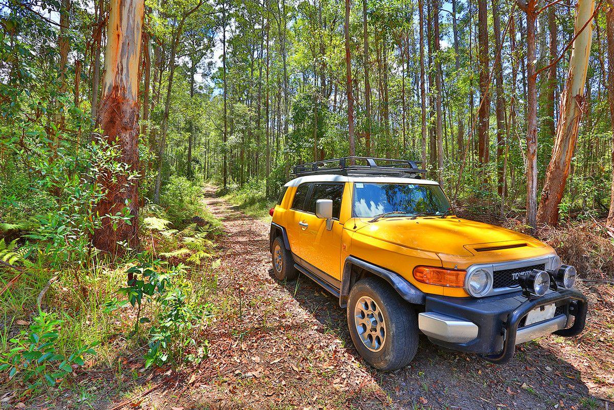 167 Chevallum School Road, Chevallum QLD 4555, Image 1