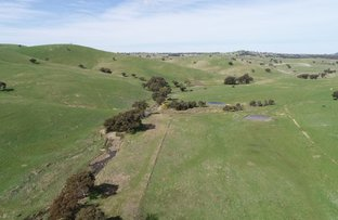 Picture of 53 Lawrence Lane, Yass NSW 2582