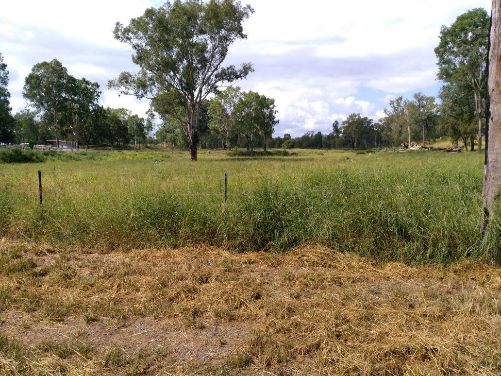 Lot 12 Paynter Road, Postmans Ridge QLD 4352, Image 2