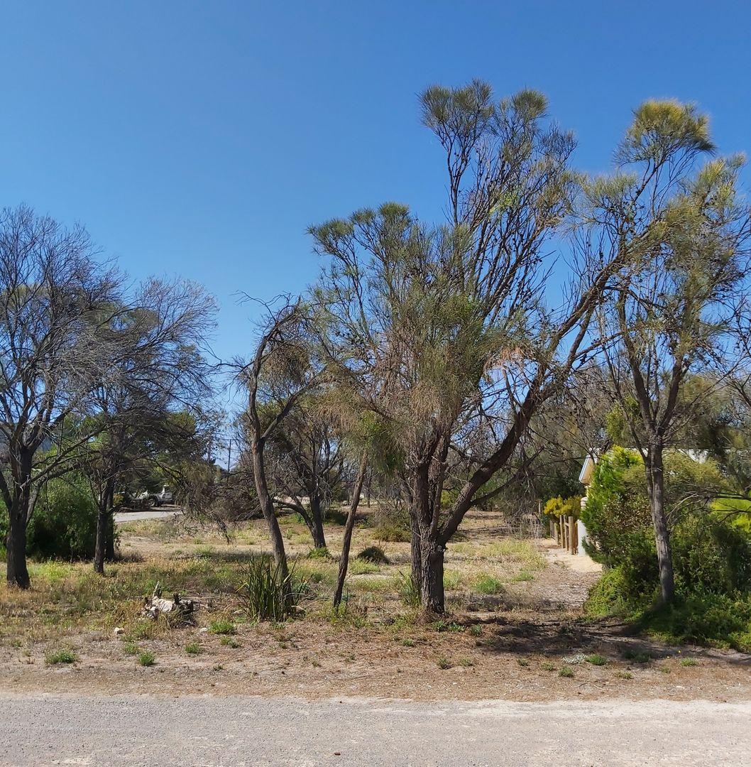 2 Mistletoe Drive, The Pines SA 5577, Image 1