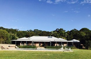 Picture of 16 St Marks Lane, Mitchells Island NSW 2430