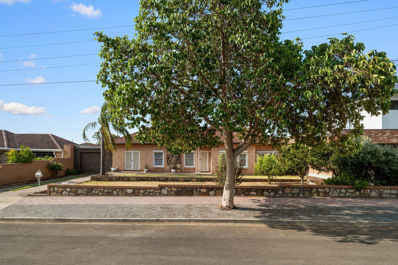31 Hann Street, Glynde SA 5070, Image 0