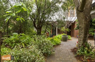 Picture of 97 Clifton Street, Nedlands WA 6009