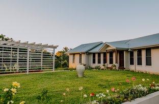 15 HILARY CRESCENT, Woombye QLD 4559