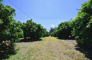 Picture of 2184 Yeppoon Road, Bondoola QLD 4703