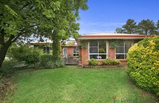 Picture of 165 Rowlands Road, Armidale NSW 2350