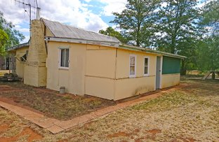 Picture of 6 Short Street, Trundle NSW 2875