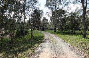 Picture of 2393 Beaudesert-Beenleigh Road, Tamborine QLD 4270
