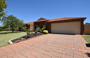 Picture of 55 Southacre Drive, Canning Vale WA 6155