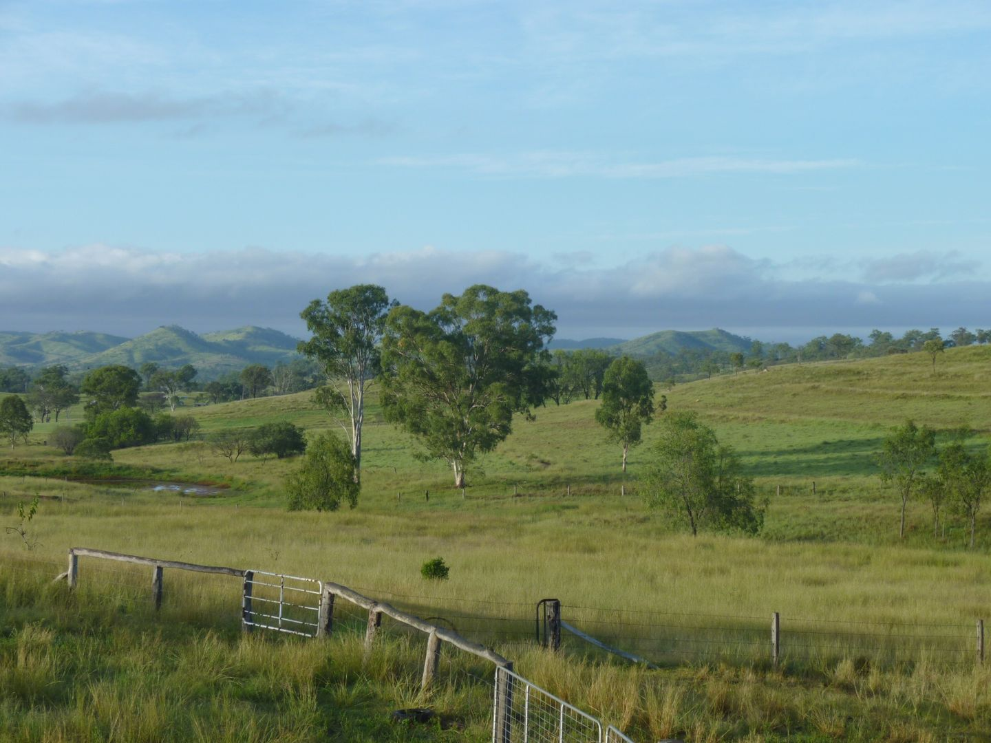 Wilson Valley QLD 4625, Image 0