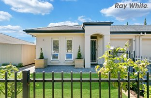 Picture of 30 Barry Road, Oaklands Park SA 5046