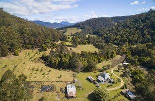 27749 Tasman Highway, Pyengana TAS 7216