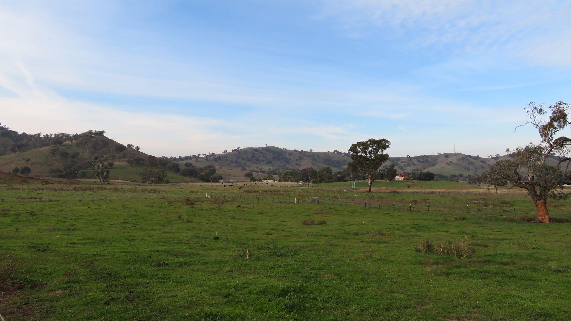 Lot 4 Five Mile Creek Road, Gundagai NSW 2722, Image 1