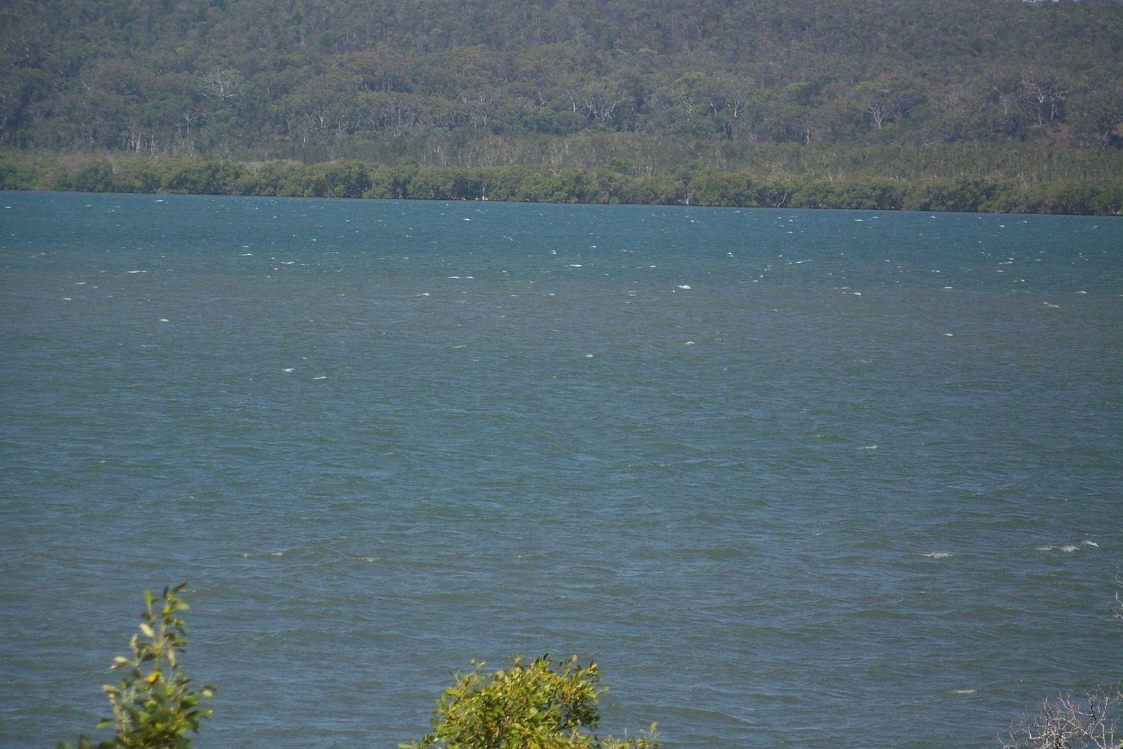 10 Atlantic st, Lamb Island QLD 4184, Image 1