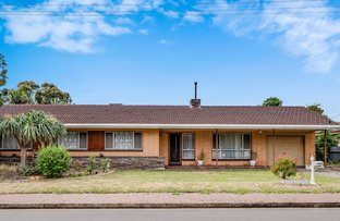 Picture of 6 Tora Court, Park Holme SA 5043