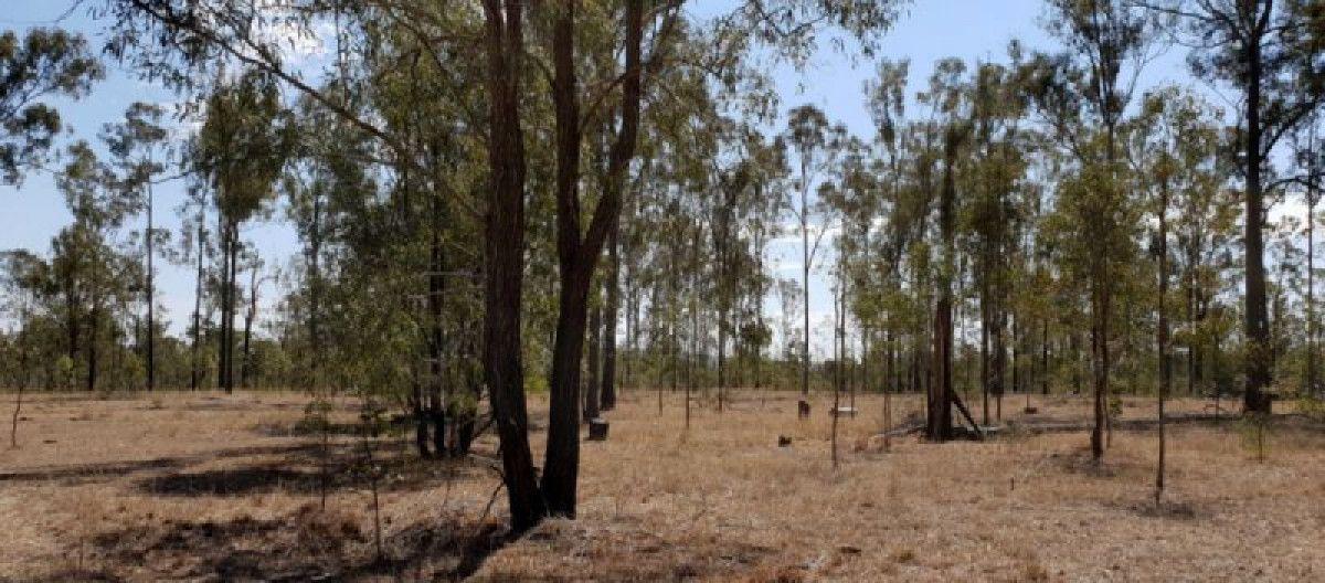 1156 Burnett Highway, Nanango QLD 4615, Image 1
