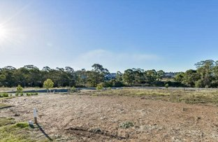 Picture of Lot 4290 McGuanne Street, Campbelltown NSW 2560
