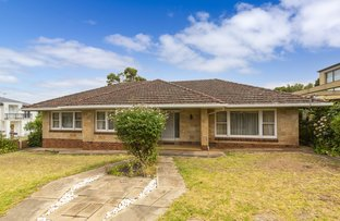Picture of 41 Hay Road, Linden Park SA 5065