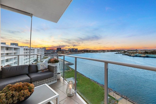 Picture of 602/19 Honeysuckle Drive, NEWCASTLE NSW 2300