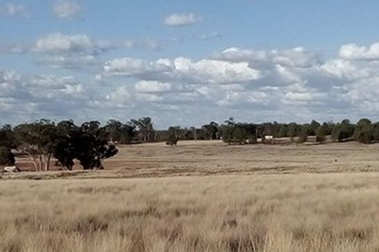 Picture of 'Fairlight' 9R Buddens Road, DUBBO NSW 2830