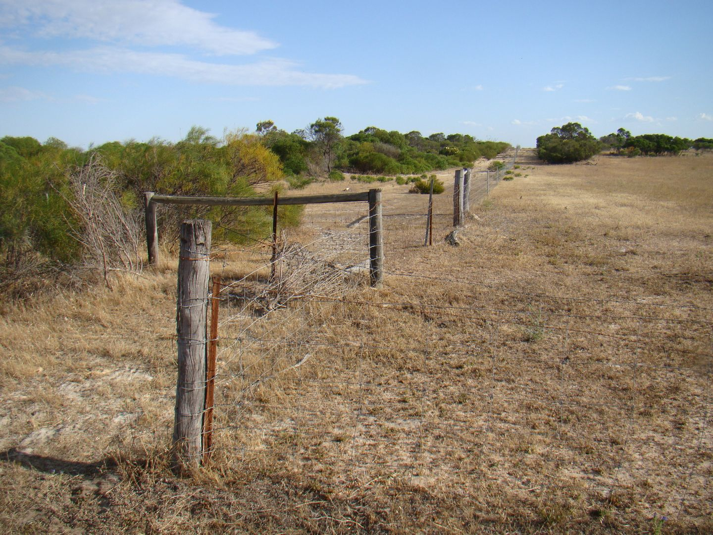 Lot 6 Mt Horner Road West, Yardarino WA 6525, Image 2