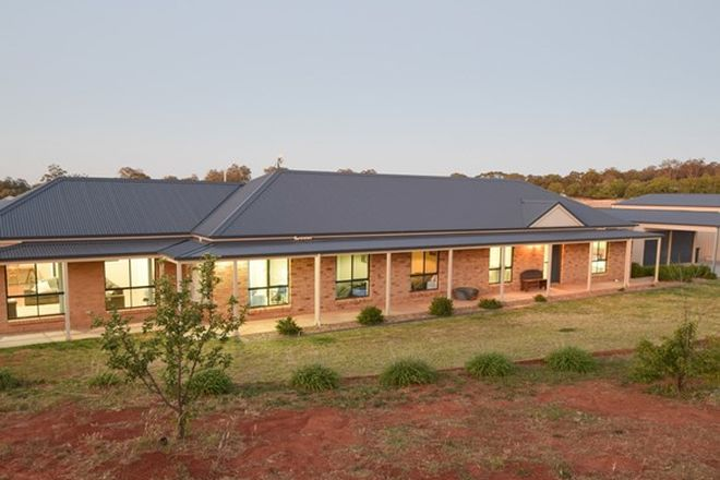 Picture of 220 Boundary Road, YOUNG NSW 2594