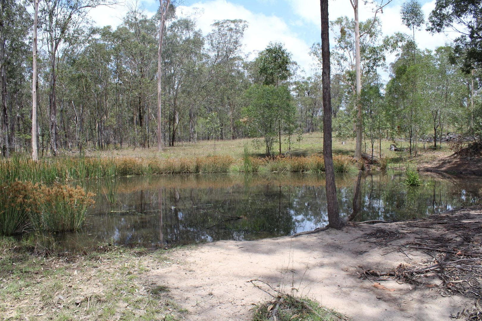 Lot 156 - 529 Netherby Road, Gundiah QLD 4650, Image 1